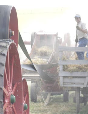 Walt Hoefer assists with steam tractor threshing
