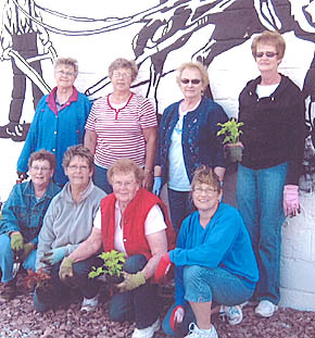Plantings to beautify Petersburg.