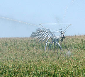 Center pivot pumps water on a corn field in western Boone County.