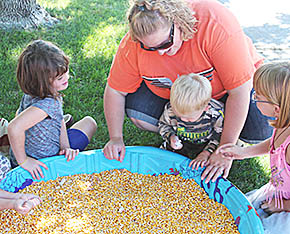 Searching through the corn tub at St. John's Festival.