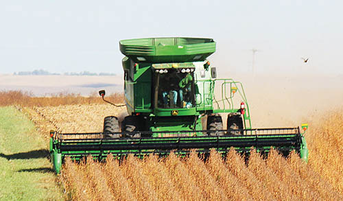 Boone County soybean harvest.