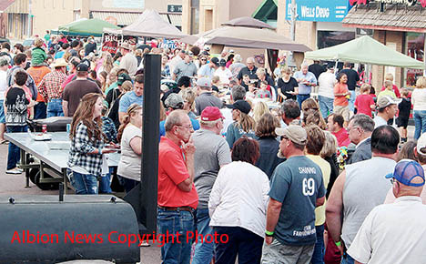 This was a portion of the crowd attending last year's Rhythm & Ribs event in Albion.