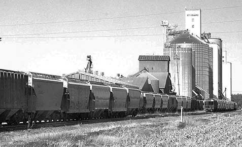 Grain cars on rail siding at St. Edward.