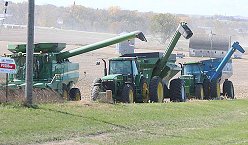 Combine and grain carts lined up in a field east of Albion.